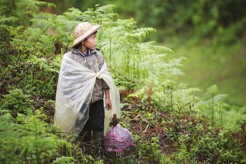 Benefícios universais para a criança são críticos na redução da pobreza