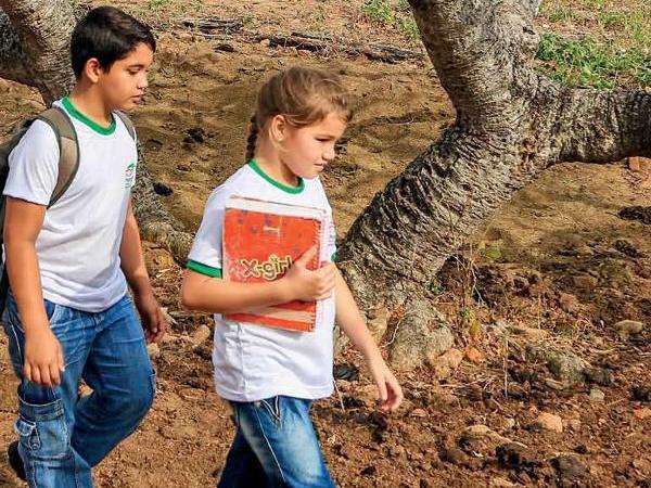 EDUCAÇÃO - Estudo do Unicef destaca ações dos MP's no enfrentamento da exclusão escolar