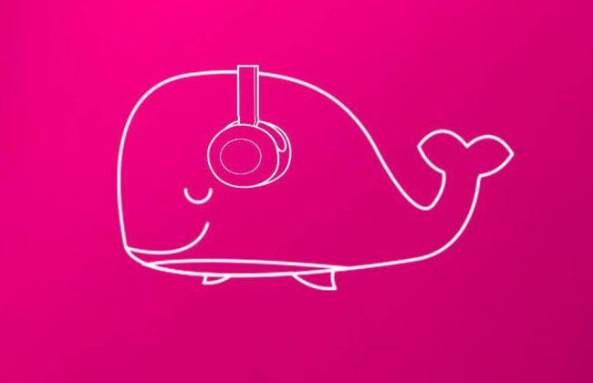 INTERNET - 13 motivos para você jogar o jogo da baleia... Rosa